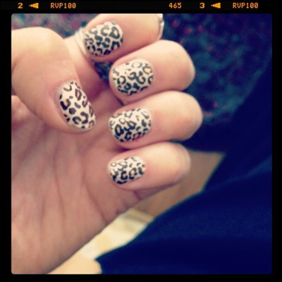 Leopard-Print-Sticks-Stickers-Kiss