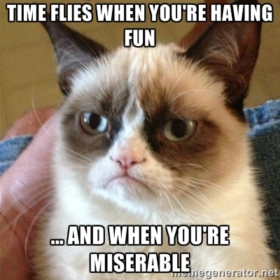 Lol Cat lolcat Miserable Time Flies